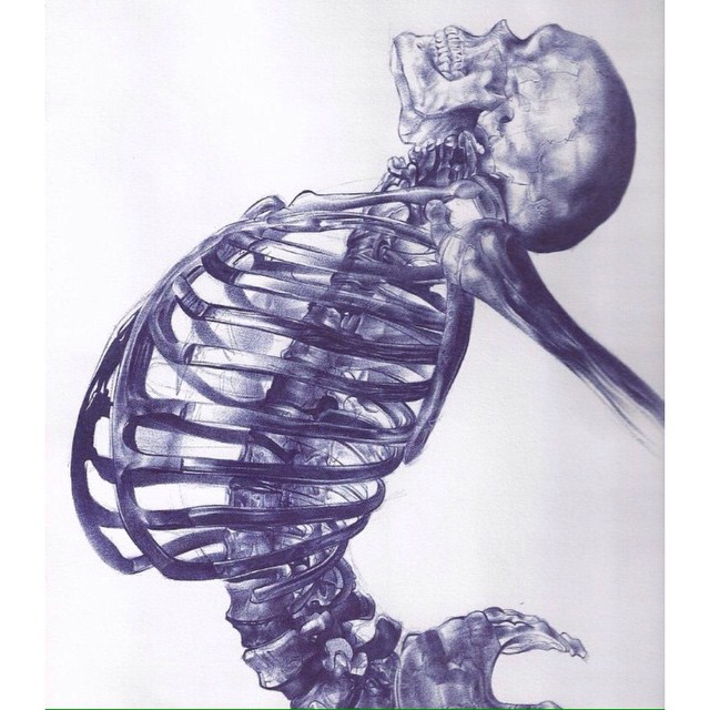 Free fall.  Art byAndrea Schillaci.  #skull #skeleton #drawing