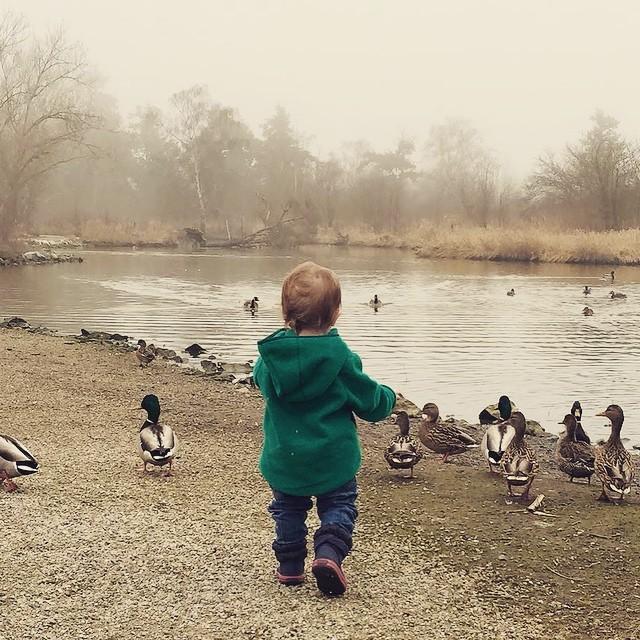 The nephew digs ducks.